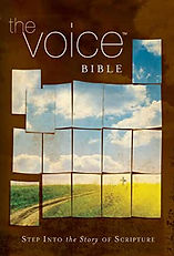 The Voice Bible.jpg