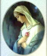 Carmelite Sister's mystical-rose.jpg