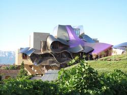 Taste Wine in La Rioja