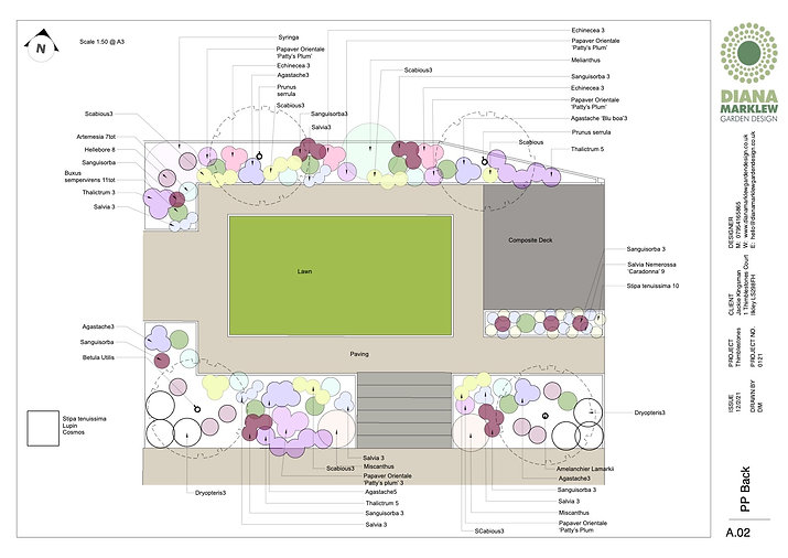 An image of a planting plan by Diana Marklew