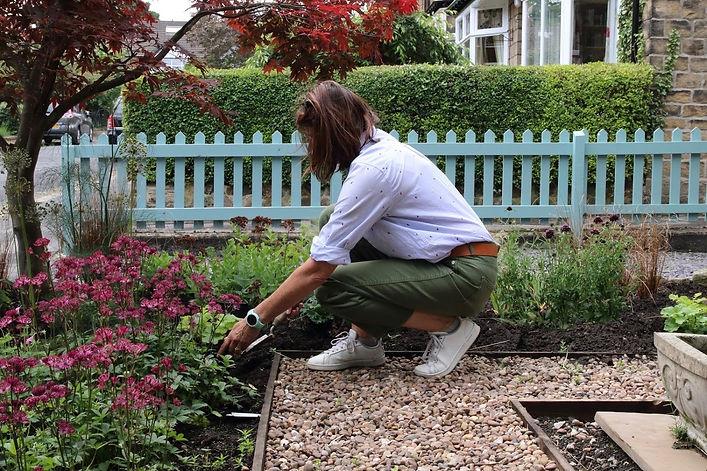 Garden Mentoring.jpeg