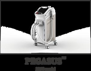 pegasus2019.2.png