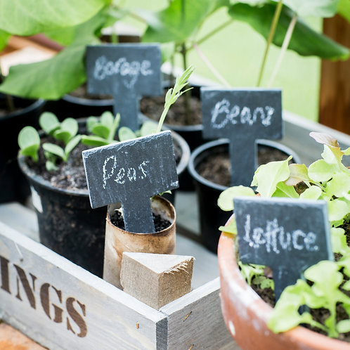 Slate Set of 6 Greenhouse Tags with Chalk