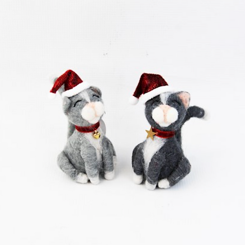 Assorted Grey Cats with Santa Hats
