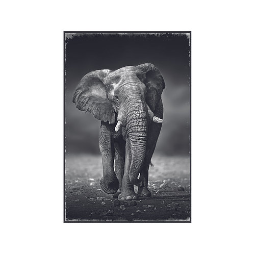Melani Glass Art picture elephant rectangle