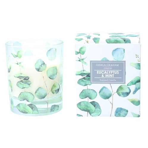 Boxed Scented Candle Eucalyptus