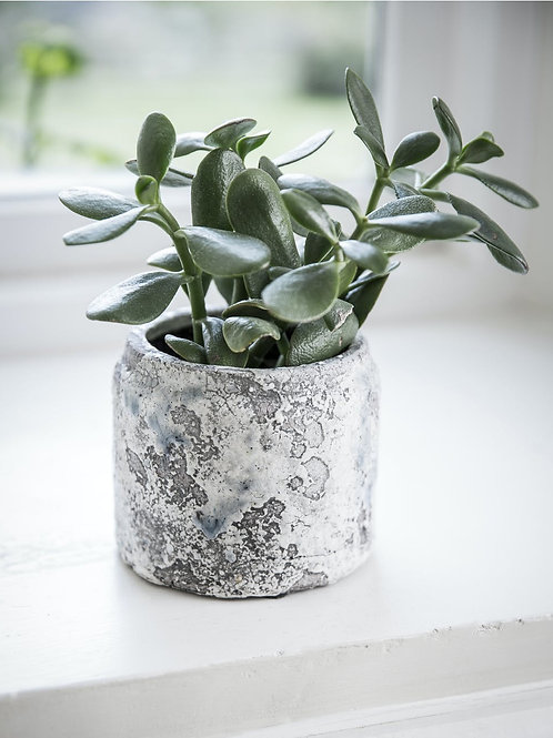 Ceramic Withington Pot in Extra Small