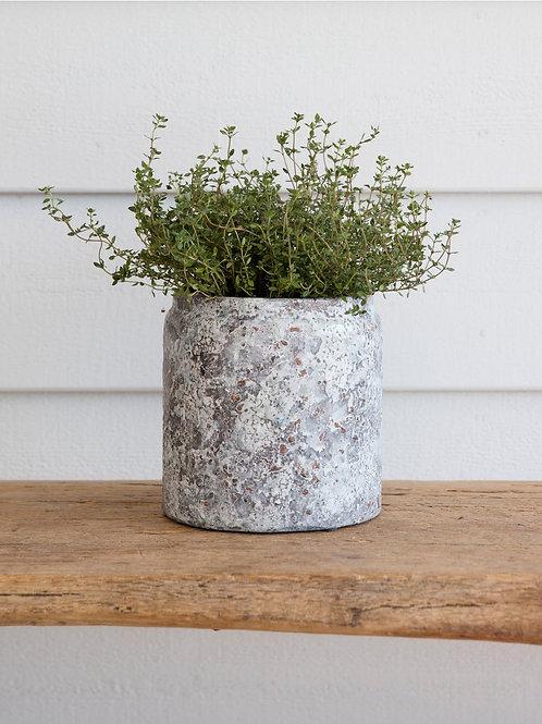 Ceramic Withington Pot in Large