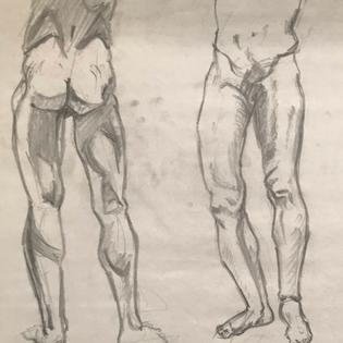 Leg Anatomy Ebony Pencil