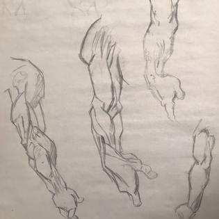 Arm Anatomy Ebony Pencil
