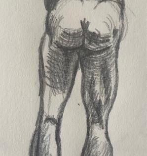 Leg Anatomy Sketch