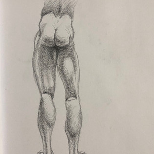 Leg Muscle Analysis