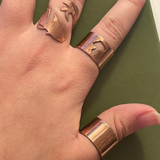 elleyse-na-jewelry-1-open-ended-ringsj