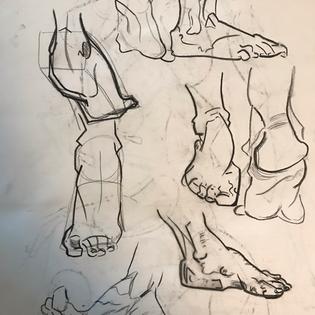 Bridgman Foot Studies