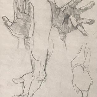 Hand Anatomy Ebony Pencil