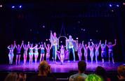 prince-circus-show