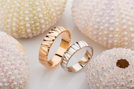 Rings with ridges.png