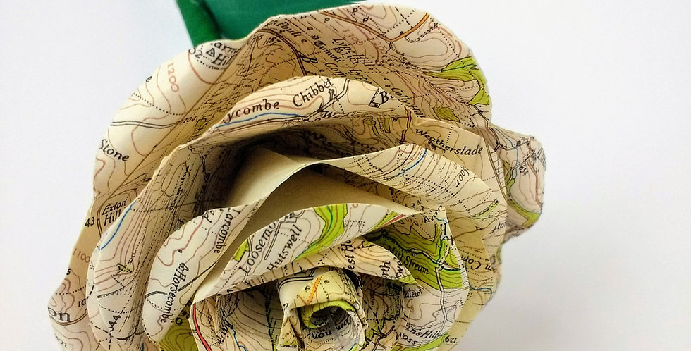 Paper rose map pages