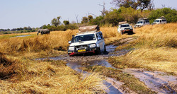 Okavango Delta self drive adventure