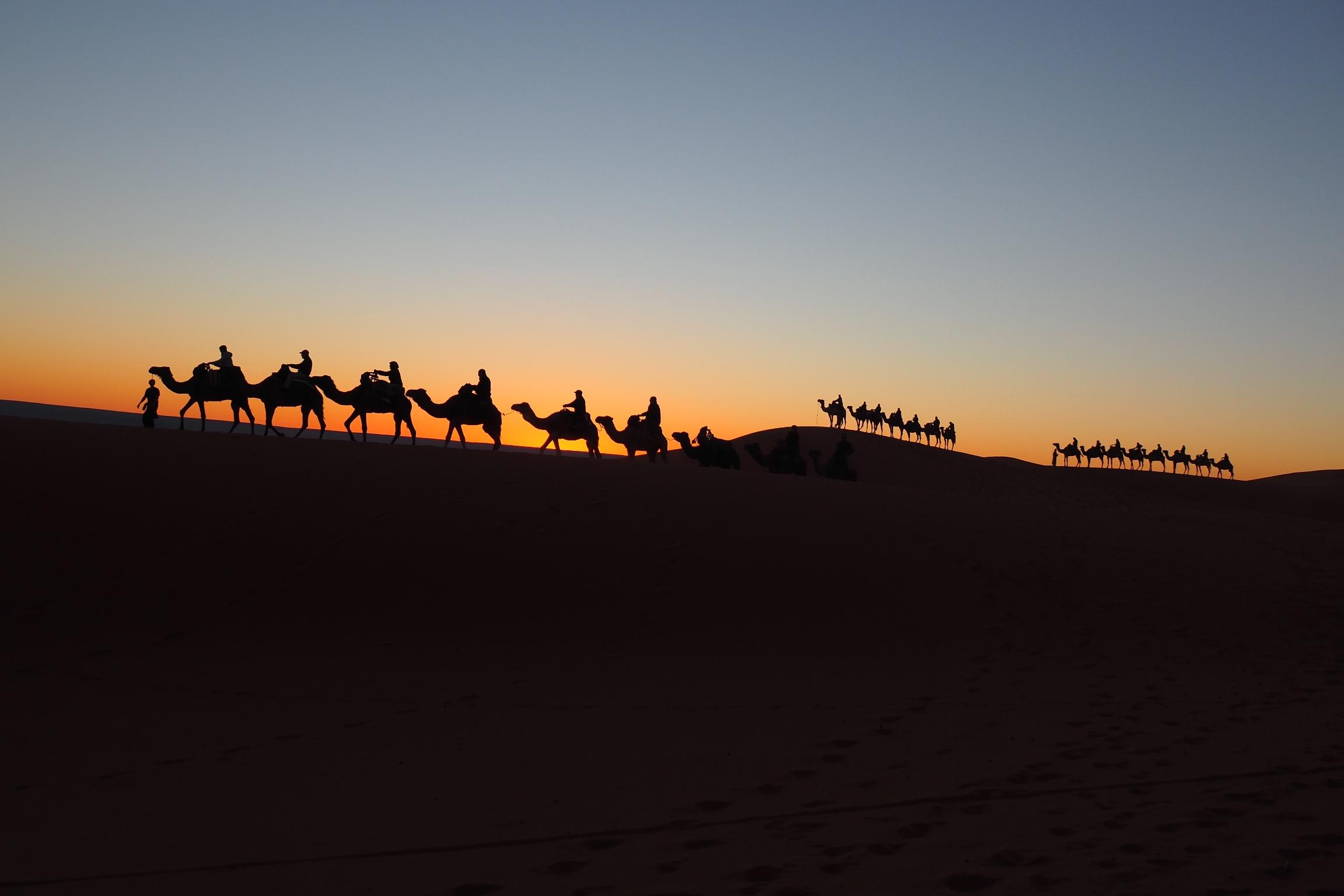 Overnight in the Sahara Desert