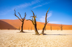 Namibia - selfdriveadventures.com