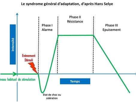 STRESSOLOGIE (1)