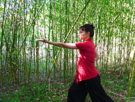 Le Qi Gong :  pour harmoniser ses émotions et renforcer son système immunitaire….