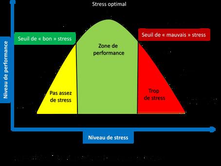 STRESSOLOGIE (2)