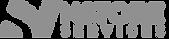 N_Logo copy.png