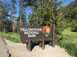 Eingang Yellowstone National Park