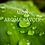 Thumbnail: MON AROMA SAVOIR - Avant de se lancer
