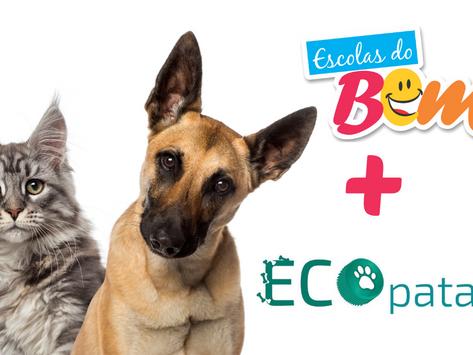 Escolas do Bem se unem à Ecopatas pela castração de animais abandonados em São Paulo