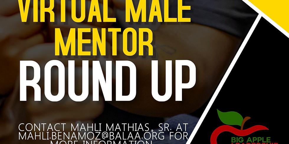 BALAA Brawns Male Mentor Roundup