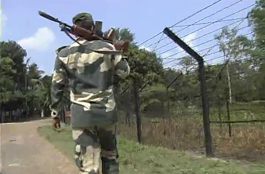bangladeshi-cow-smugglers-killed-in-bsf-firing