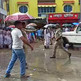 পাশ করানোর দাবিতে স্কুলে তালা, রাজ্য সড়ক অবরোধ