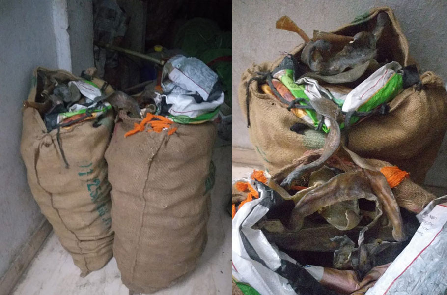 Kaliachak police arrested two traders with tortoise parts