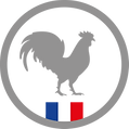 DGF - Made in France.png