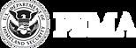 logo_FEMA.png