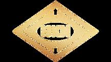 HKN_logo_gold.png