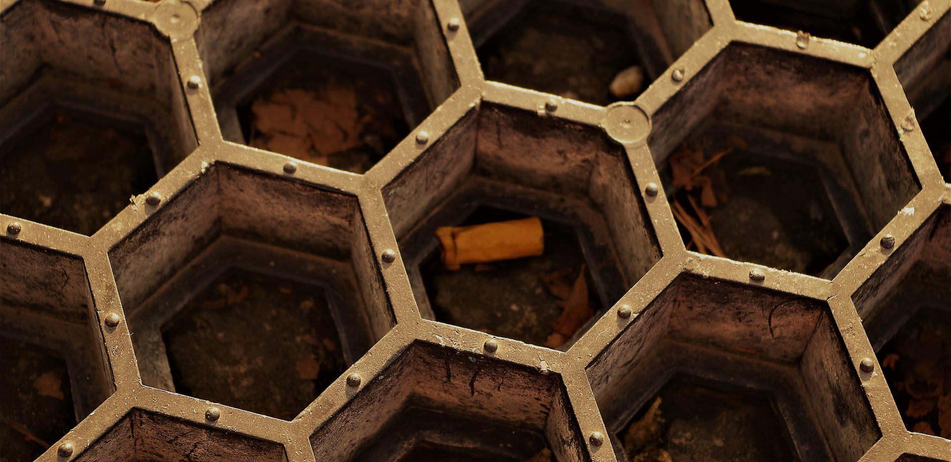 Ruche nicotinée