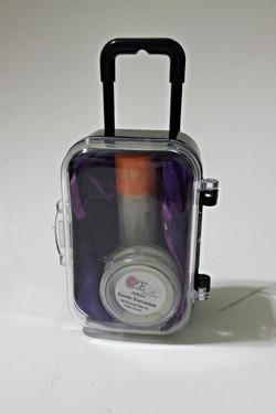 Travel Suitcase Party Favor