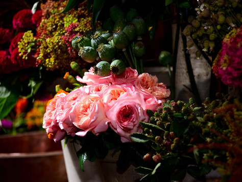 Venue Shoutout: Winston Flowers and Gardens
