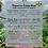 Thumbnail: Costa Rica - Week 4