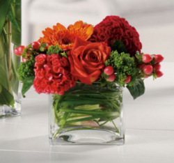 Paul Douglas Floral Designs