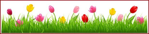 clipart-border-spring-10.png