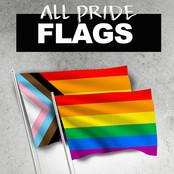 lgbtshirts-product-category-square-prideflags.jpg