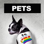 lgbtshirts-product-category-pets.jpg