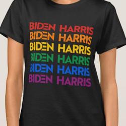 BIDEN / HARRIS PRIDE