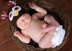 Sleepy Owl Newborn Photo Session