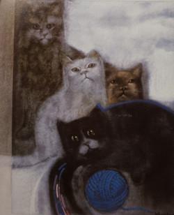 Bosschem - Galerij Poseidon - Kat met bollen wol